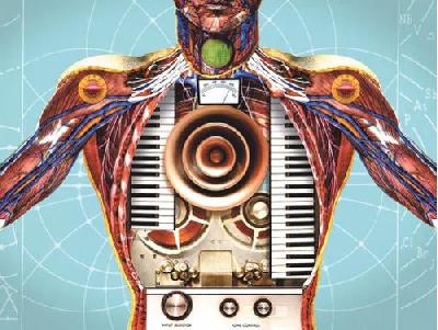 La musica alla base della vita: i suoni nascosti emessi dal nostro corpo